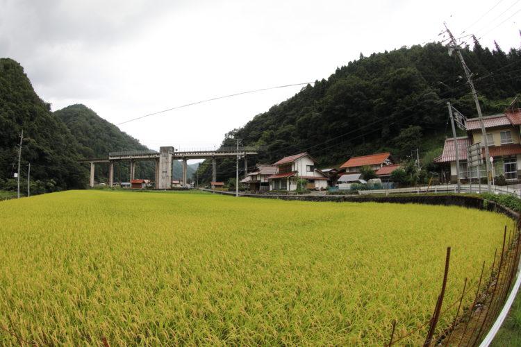 三江線宇都井駅全景