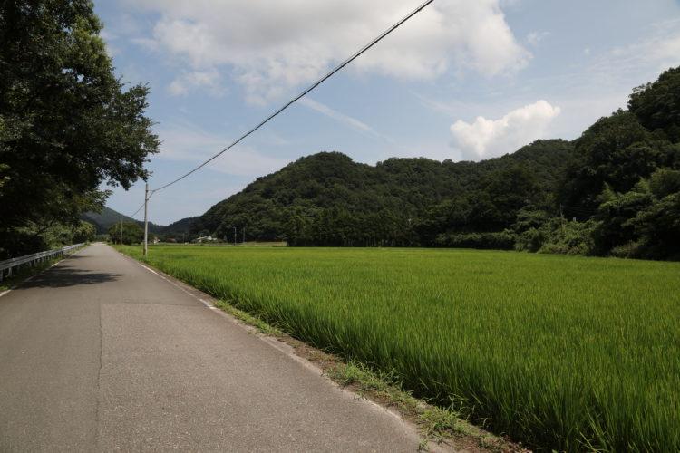 三江線千金駅カーナビ目的地周辺