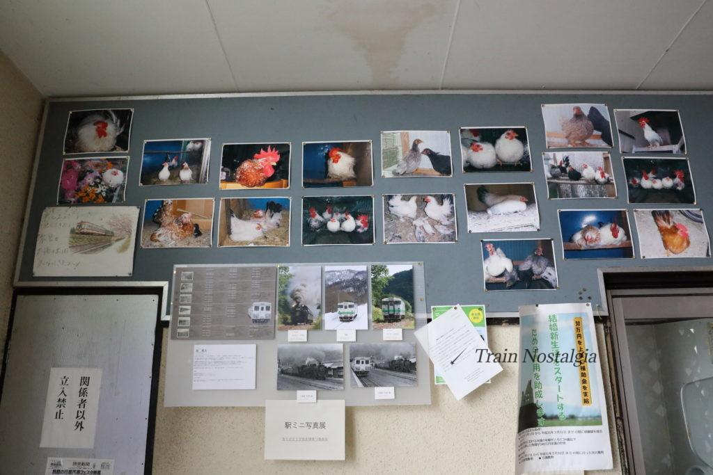 夕張線南清水沢駅鶏の写真