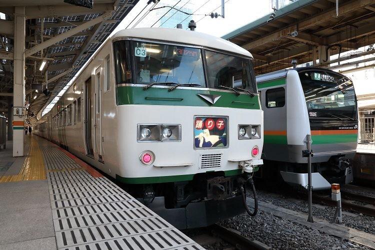 185系特急踊り子とE233系上野東京ライン普通列車